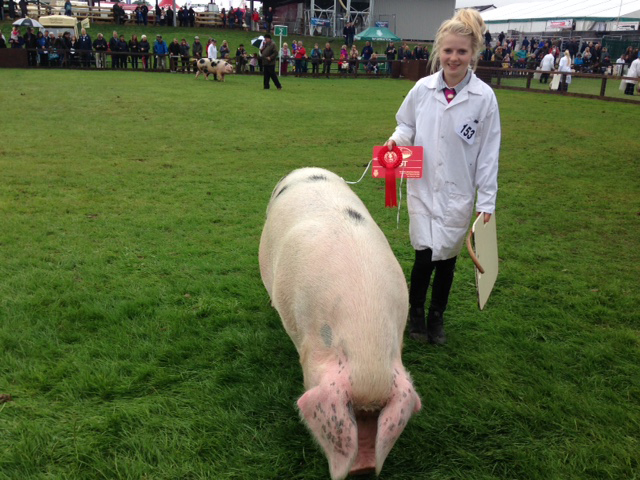 Yorkshire Show 2016